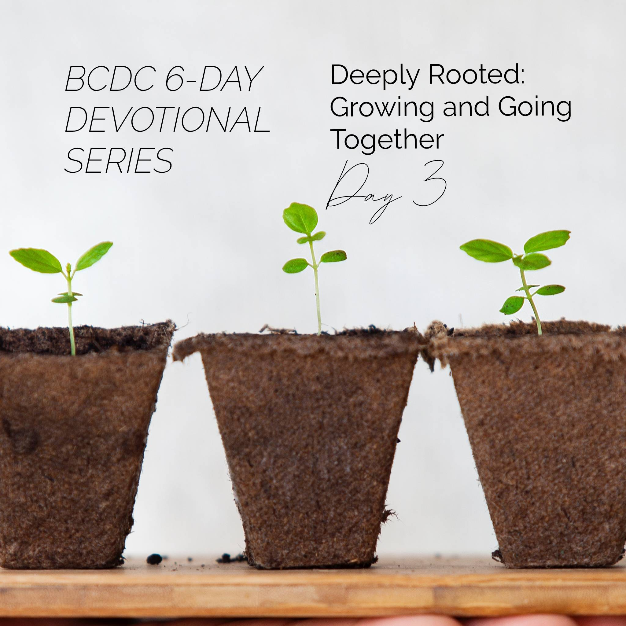 Deeply Rooted Devotional Day 3