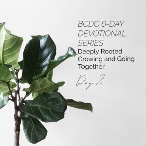 Deeply Rooted Day 2
